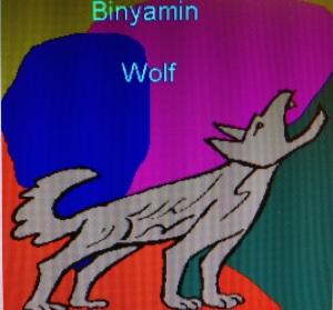 Tribe of Benjamin